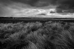 Across the Dunes, Brancaster