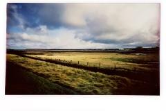 Across the Marsh #2, Burnham