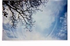 Blue Sky at Last, Norfolk