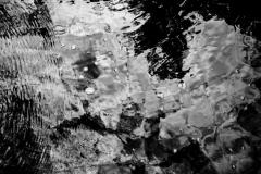 Black Water #3