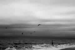 Dark Sea #01
