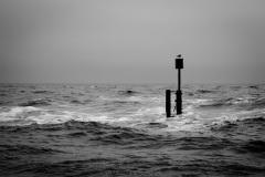 Dark Sea #04
